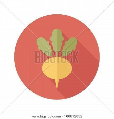 Turnip flat icon. Vegetable root vector illustration