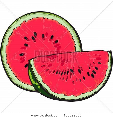 Half and quarter of ripe red watermelon with black seeds, sketch style vector illustration isolated on white background. Realistic hand drawing of half and slice of juicy, ripe watermelon