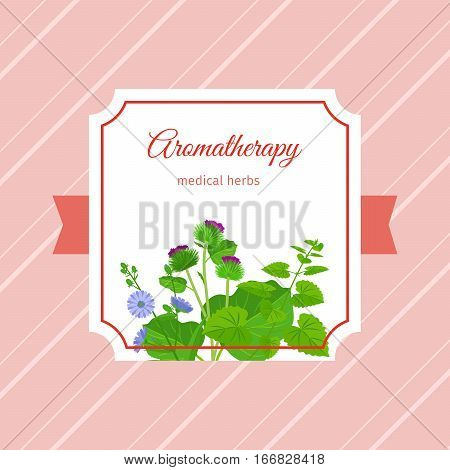 Aromatherapy medical herbs label design. Chicory, burdock, eucalypt herbs. Vector illustration