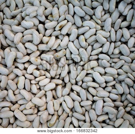 White haricot beans background. Dried beans for soup or garnet cooking. Side dish with vegetarian protein. White beans heap. Closeup photo of white haricot beans. Haricot beans pile