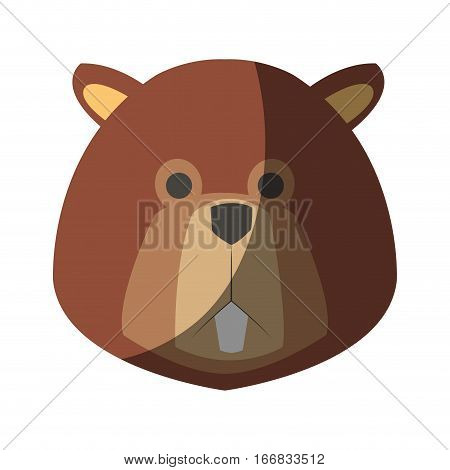 beaver cartoon  icon over white background. colorful design. vector illustration