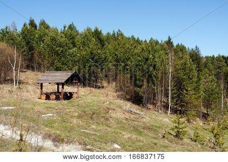Wooden pergola on hillside near pine forest in spring.