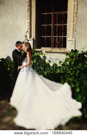 Bride's Dress Spreads Around Among The Green Bushes While Groom Kisses Her