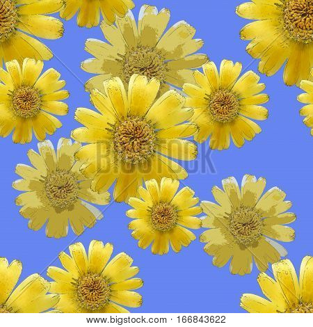 Marigold calendula officinalis. Colorful texture of flowers. Seamless pattern for continuous replicate. Beautiful photo collage.