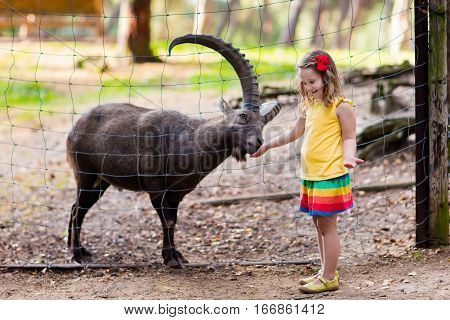 Cute little girl in colorful dress watching and feeding wild alpine goat with large horns at the zoo on sunny summer day. Wildlife and Alps mountains nature experience for kids at animal safari park.