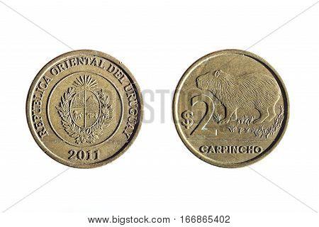 Two Peso Uruguayan Currency