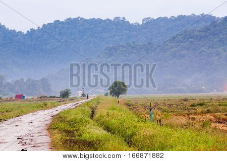 Walking path view with farm for blur background