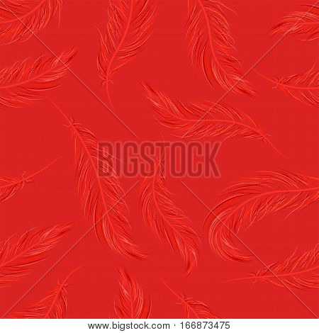Seamless Pattern Of Feathers On Red Background