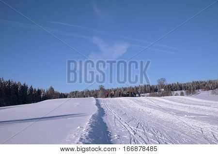 Cross-country skiing Winter sunny landscape Kvilda Sumava Czech republic. Trails for skiers. The concept for the sport. The concept of winter sports. Tourism concept. Bodycopy space. The concept for promotional use