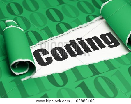 Database concept: black text Coding under the curled piece of Green torn paper with  Binary Code, 3D rendering