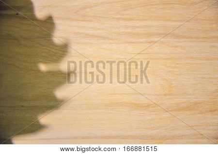 Background of light birch planks and shadow of the circular saw