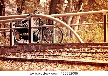 Autumn vintage retro bicycle parked near parapet with lots of leaves around