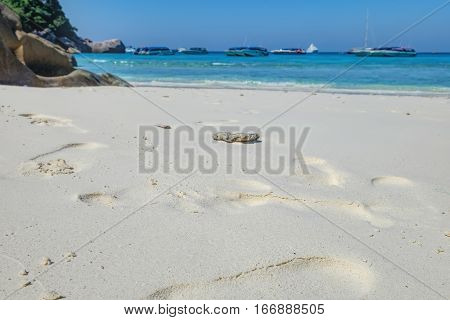 White sand closeup on the beach of the Koh Similan No.8 Island in Similan National park, Andaman Sea, Thailand. Relaxing on remote paradise beach.