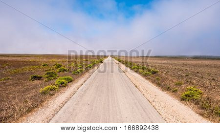 A long country road leading to the hoziron in Portugal