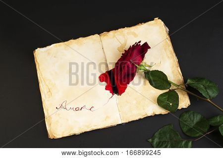 Red rose on stylized antique notebook with red ink spilled and the inscription