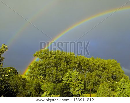 Double rainbow over tall trees against blue sky in Lockerbie Scotland in June
