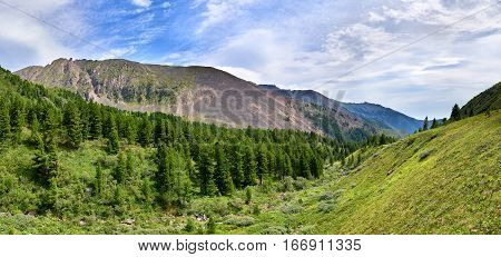 Mountain taiga on one of valleys and tundra. Eastern Sayan. Russia