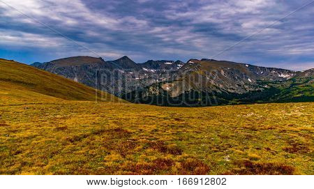 An Alpine Tundra Meadow with a Mountain View Rocky Mountain National Park