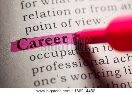Fake Dictionary definition of the word Career.