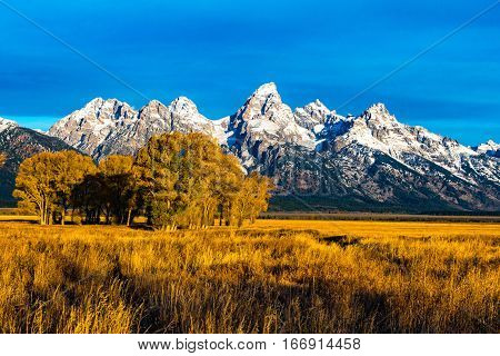 The Grand Tetons early fall Morning Jackson, Wyoming