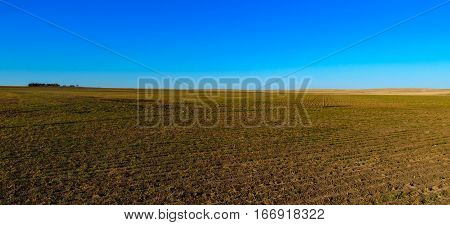 Farm and Wide Open Prairie Grassland on a Spring Afternoon
