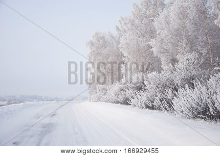 Winter country road with forest on the side