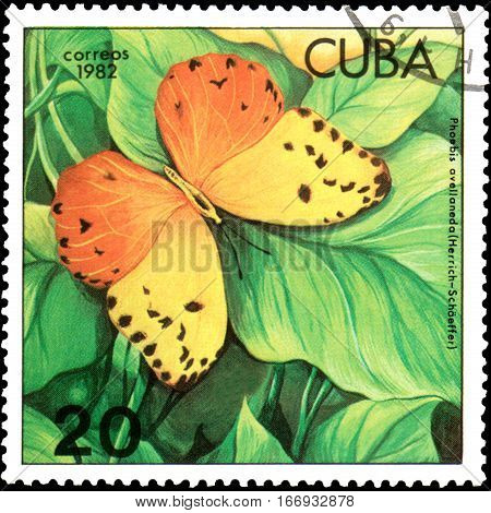 CUBA - CIRCA 1982: Postage stamp printed by Cuba shows butterfly Phoebis avellaneda, series Butterflies