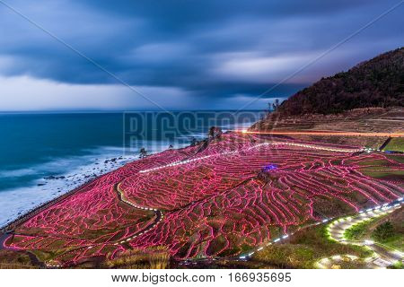 Wajima, Japan at Shiroyone Senmaida rice terraces during a winter light up.