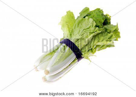Butter Lettuce isolated on white