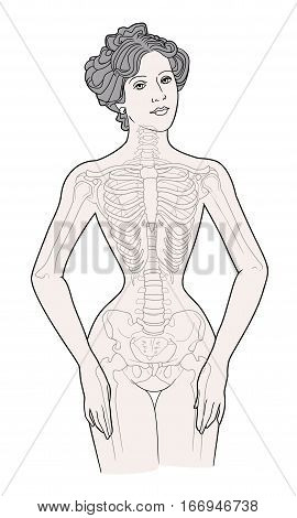 The deformation of the female chest while skeleton wearing a corset retro 1900's in years on a white background