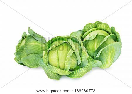Fresh green cabbages isolated on white background