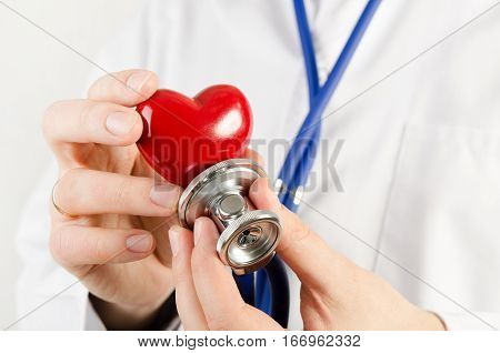 Cardiologist Holding Heart 3D Model