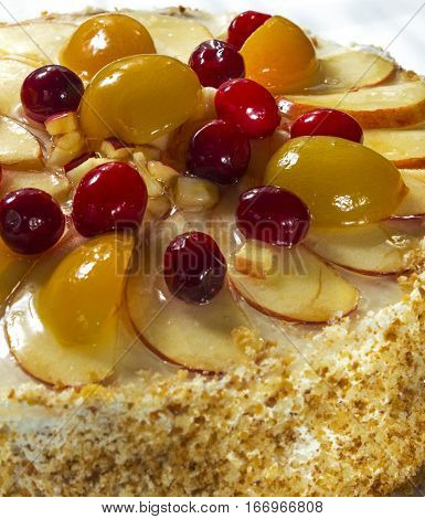 Fruit cake with cherries apricots and apples.