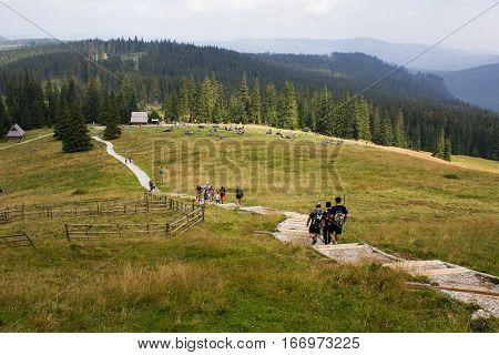 Tatry, kamienisty szlak prowadz