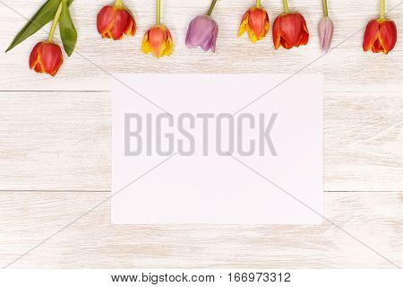 Lilac and red tulips and banner space for text in the white wooden table. Banner template layout mockup for Woman Day, Valentines Day and Teacher's Day. Photo for posts, blogs, advertising and news.