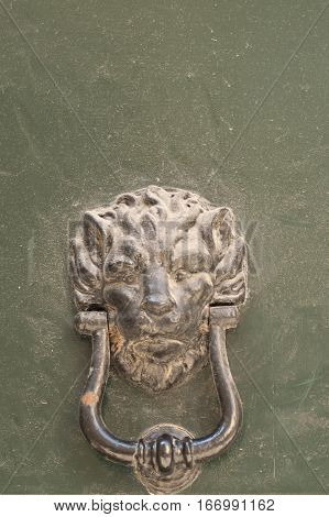 particularly embossed lion-shaped metal and an old door
