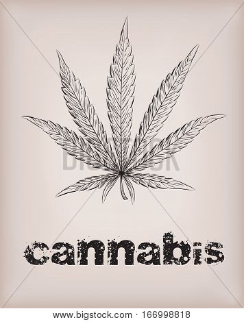 Cannabis marijuana weed leaf silhouette narcotic drug plant. Vector beautiful close-up top view sign signboard inscription smoked black outline line art design drawn illustration beige background