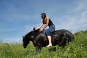 beautiful black stallion laid down and young teen poster