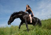 beautiful black stallion and young teen in a field poster