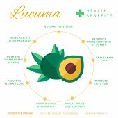 Lucuma fruit health benefits and nutrition infographics. Superfood lucmo berry nutrients and vitamins information. Healthy detox natural product info. Flat vector organic food icon. poster