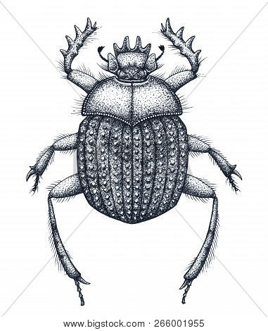 Sacred Beetle Of Scarabs Tattoo Art. Dot Work Tattoo. Insect. Egyptian Symbol Of Eternal Life, Resur