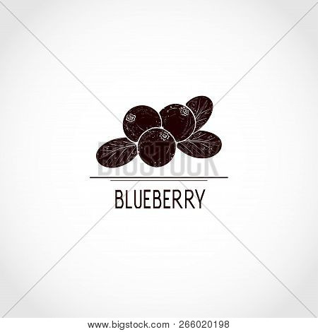 Blueberry. Berries.  Black Silhouette On White Background. Logo, Emblem, Sign, Symbol