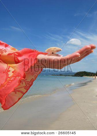 Woman holds a seashell against a sandy beach of Langkawi island, Malaysia