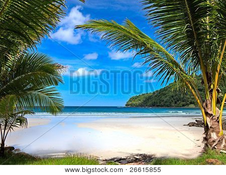 beautiful tropical beach in Thailand