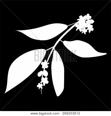 Chandan Or Sandalwood Plant Isolated Logo Icon. White Silhouette. Vector