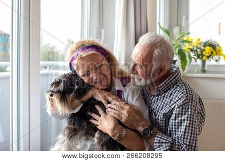 Happy Senior Couple Holding Dog At Home And Enjoying Together In Moment