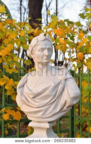 Statue Of Gaius Julius Caesar In Summer Garden At Evening, St.petersburg, Russia. Roman Statesman An