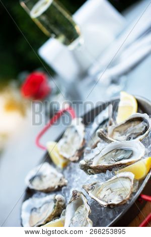 Fresh oysters with lemon's slices in ice and champagne. Restaurant delicacy, beautiful table setting. Saltwater oysters dish. Romantic dinner in restaurant. poster
