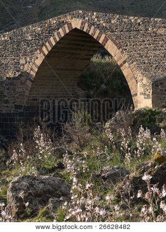 old stone bridge with the main gothic on the Simeto river