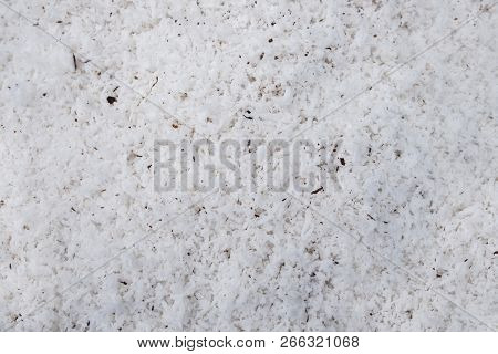 Background And Texture Of White Desiccated Coconut Flake. Desiccated Coconut Flake For Ingredient Fo